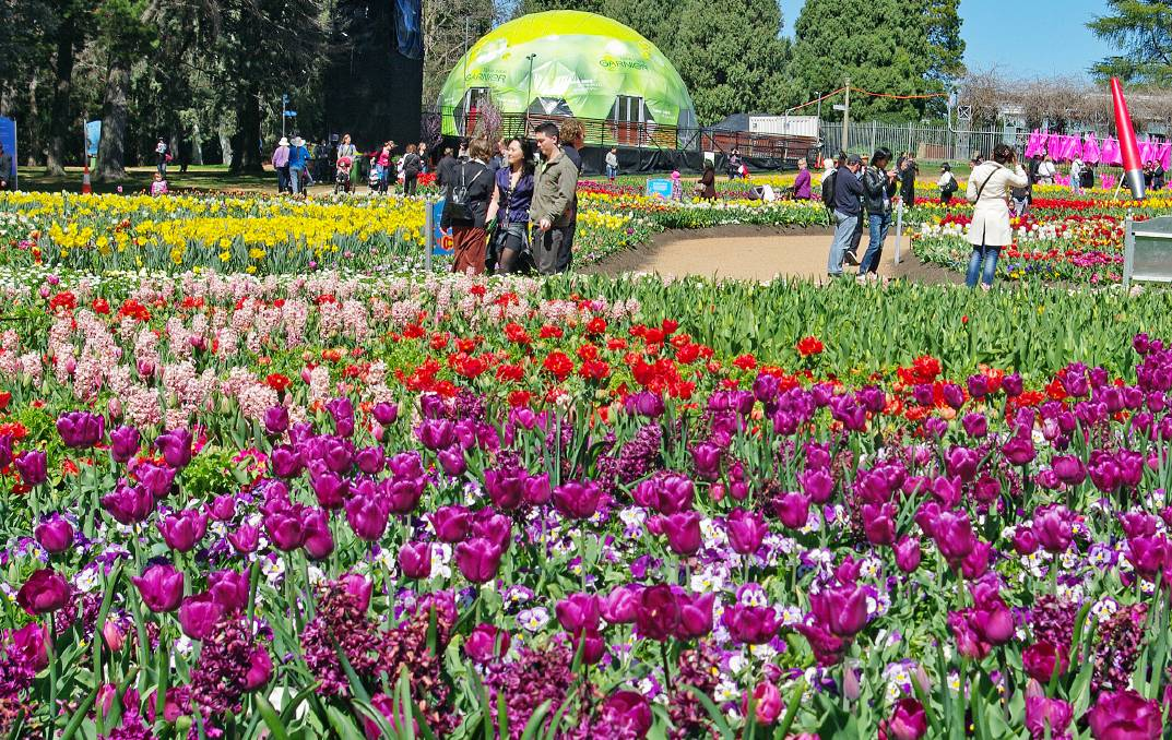 See Floriade in all its glory in Canberra on this Travelrite/The Senior escorted tour with Maureen and Paul Lucas. Photo: Paul Lucas