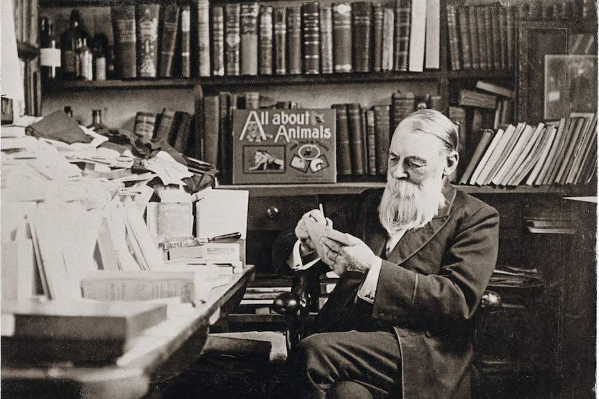 Cole in his study at the Book Arcade on Bourke Street at the turn of the century. Picture: Coles Album, Henry Williams, State library of Victoria