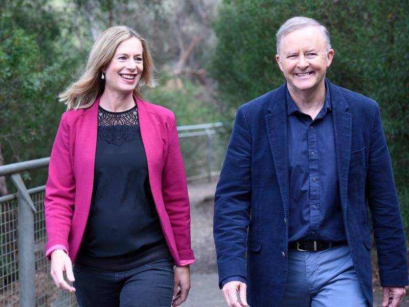Anthony Albanese has backed Tasmanian Labor leader Rebecca White's campaign, despite infighting.